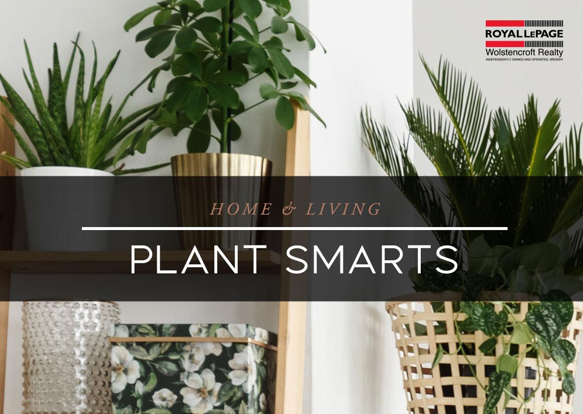 Plant Smarts