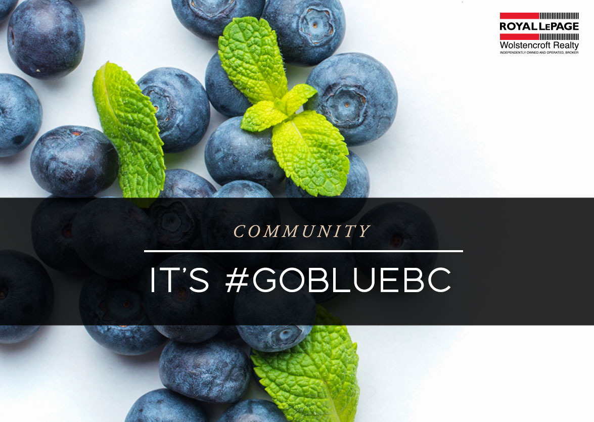 It's Time To #gobluebc With BC Blueberries!